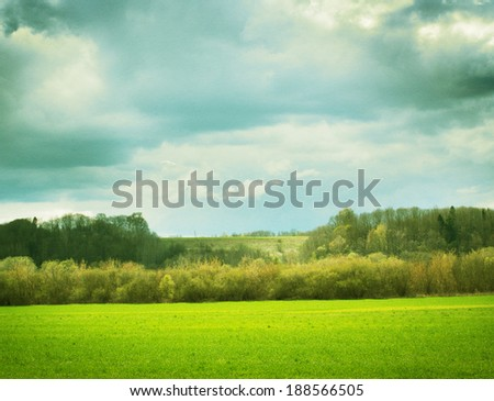 Vintage landscape with grass, trees, bushes.
