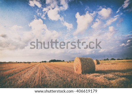 Vintage landscape with hay bales - stock photo