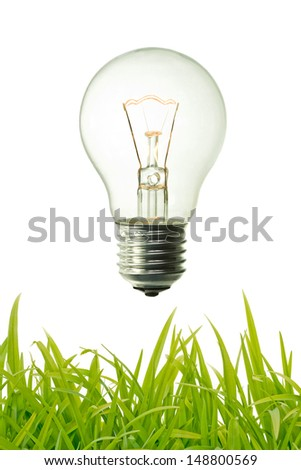 vintage lighted bulb and green grass background  - stock photo