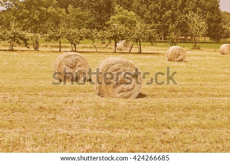Vintage looking Round hay bales in a field