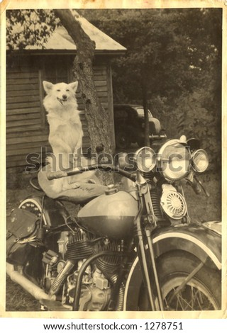 Vintage motorcycle with dog sitting up on seat 30's circa - stock photo