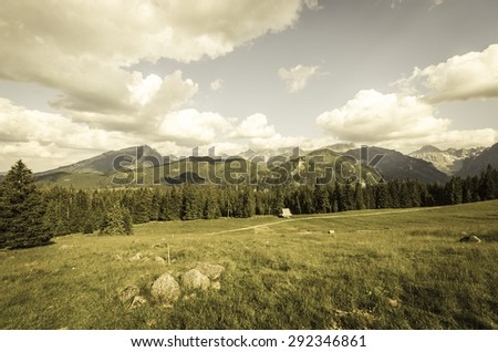 Vintage mountains landscape