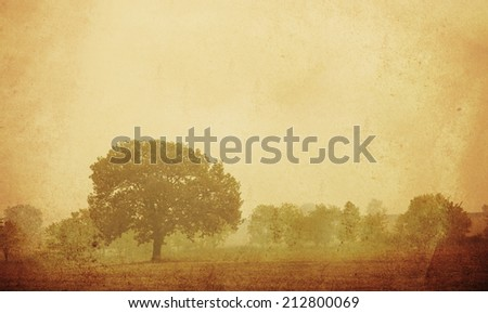 Vintage nature background with several trees,  old card with forest  - stock photo