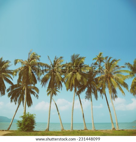 Vintage nostalgic stylized palm tress on ocean beach with copy space - stock photo