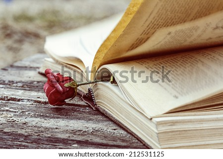 vintage open book on wood desk with rose - stock photo