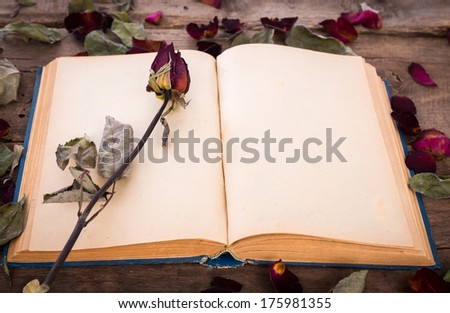 Vintage open book with dried rose