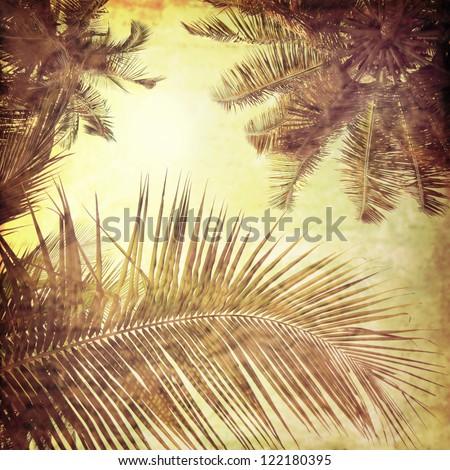 vintage palm background - stock photo