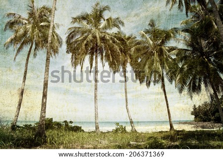 Vintage palm trees background - stock photo