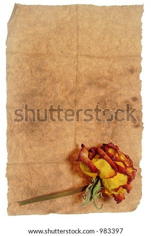 Vintage paper and rose - stock photo