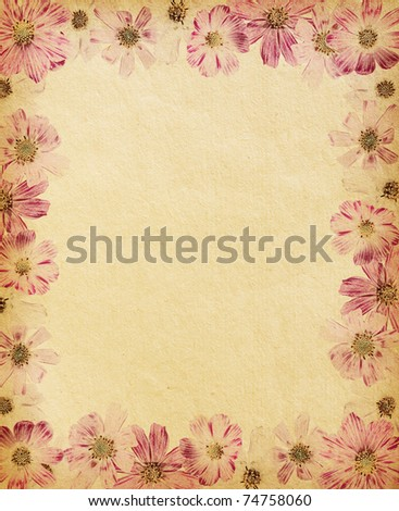 vintage  paper textures with  floral frame. cosmea - stock photo