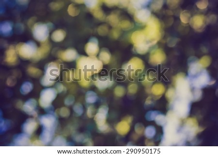 Vintage photo of abstract background of green forest bokeh. Blurry forest backdrop   - stock photo