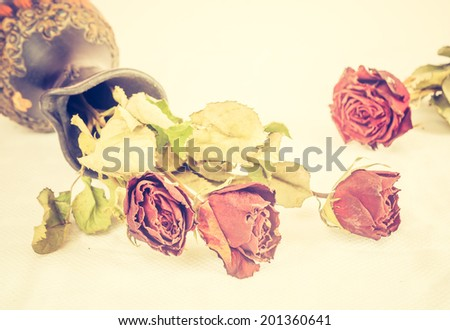 vintage photo of dried rose still life - stock photo