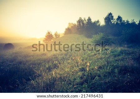 vintage photo of foggy morning on meadow - stock photo