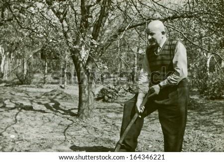Vintage photo of man digging in garden, fifties - stock photo