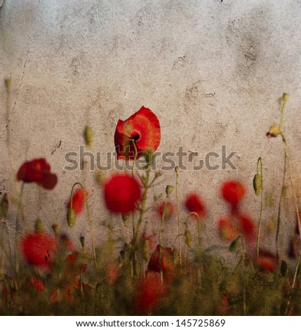 Vintage photo of poppy field - stock photo