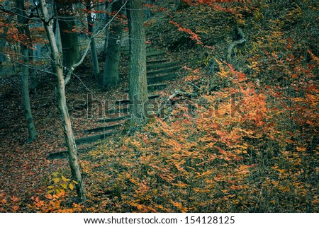 Vintage photo of stone stairs in autumn forest - stock photo