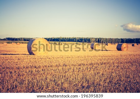 vintage photo of straw bales on field