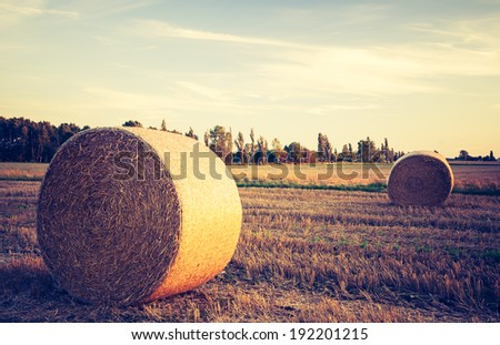 vintage photo of straw bales on field. rural landscape - stock photo