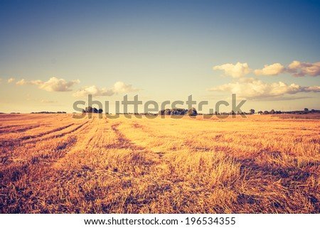 vintage photo of stubble field landscape - stock photo