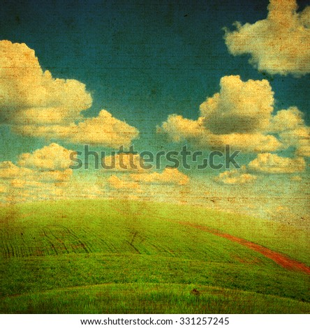 Vintage Photo of Summer Nature with the Grass and Sky - stock photo
