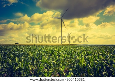 Vintage photo of windmills standing on corn field. Beautiful rural landscape with windmills.