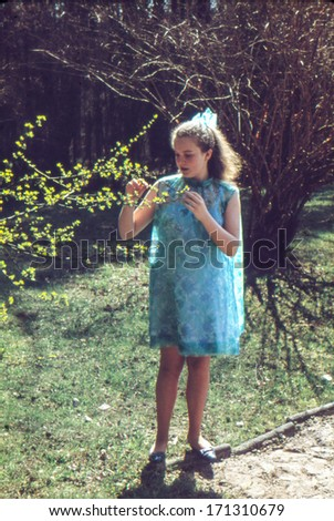 Vintage photo (scanned reversal film) of young girl in garden (circa 1967) - stock photo