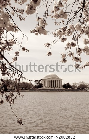 Vintage photograph of Jefferson Memorial framed with cherry blossoms