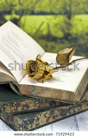 Vintage poetry book with dead rose; lying on table against countryside background