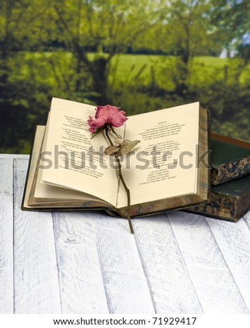 Vintage poetry book with red rose; lying on table against countryside background