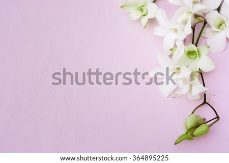 Vintage postcard with white orchids on the pink wooden background. Background