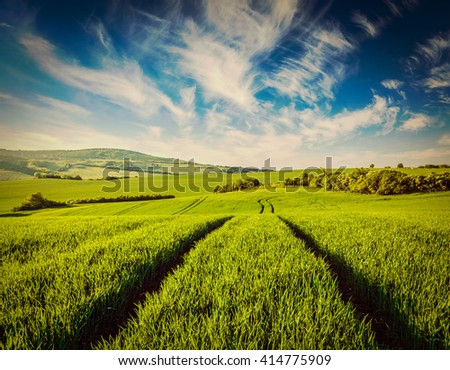 Vintage retro effect filtered hipster style image of green fields of Moravia, Czech Republic