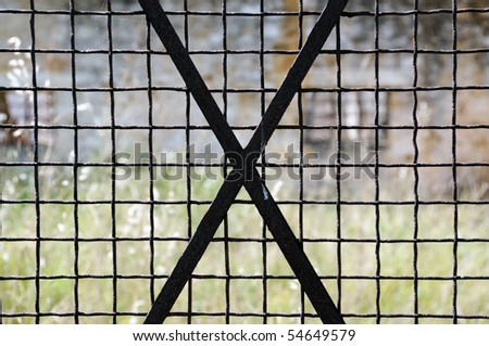 Vintage rusty metal door frame grid. Abstract background. - stock photo