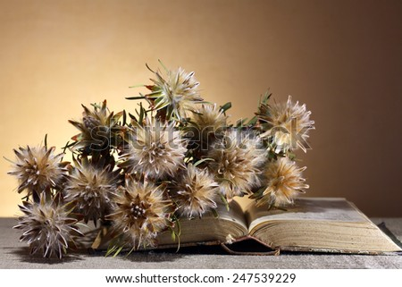 Vintage still life. Bunch of dry flowers on old book - stock photo