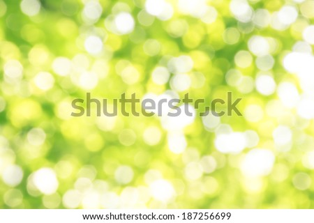 Vintage style abstract light green blur bokeh background. - stock photo