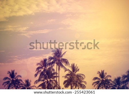 Vintage style filtered nature background with flare effect. - stock photo