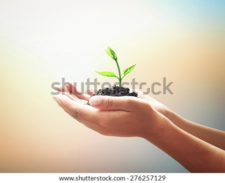 Vintage style. Human hands holding young plant with soil on blurred abstract beautiful sea or ocean or forest or desert over colorful sunset background. Ecology concept. World Environment Day concept. - stock photo