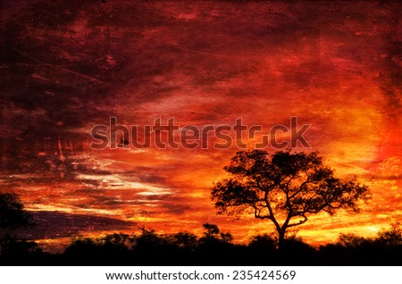 Vintage style image of African sunset in the Kruger National Park, South Africa - stock photo