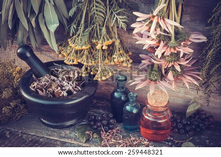 Vintage stylized photo of  healing herbs bunches, mortar and oil bottles, herbal medicine. - stock photo