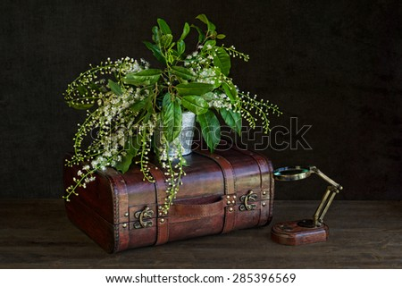 vintage suitcase with magnifying glass and with white flowers - stock photo