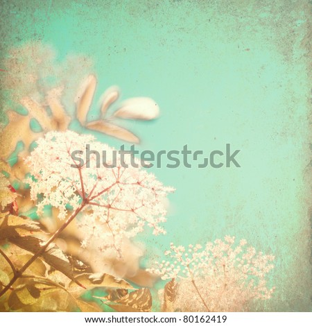 Vintage summer flowers - stock photo