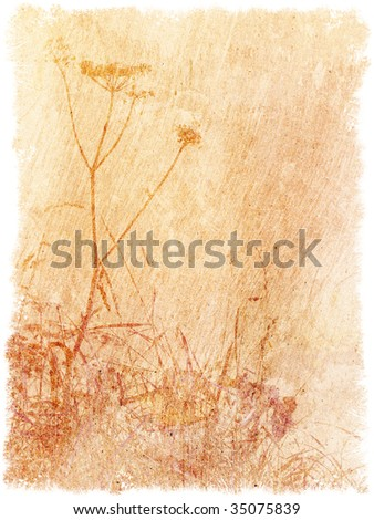 Vintage textured floral backdrop with space for text or image - stock photo