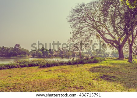 vintage tone image of grass field and river on day time for background. - stock photo