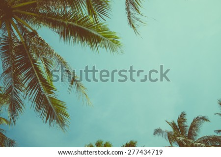 Vintage toned palm tree over sky background - stock photo