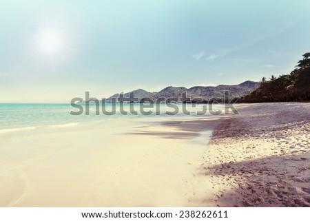 Vintage tropical beach background - stock photo