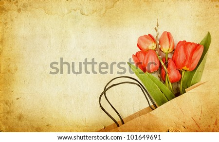 Vintage tulips - stock photo