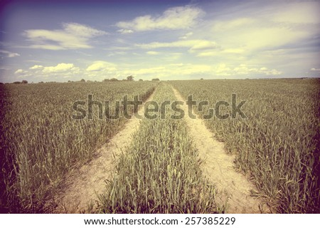 Vintage view of country road running through field