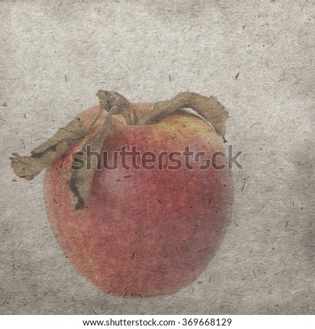 vintage wallpaper background with apple - stock photo