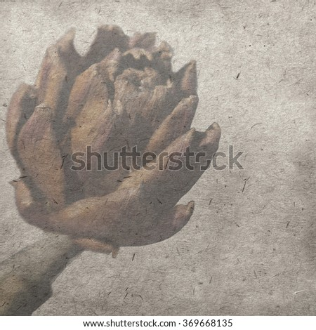 vintage wallpaper background with artichoke - stock photo