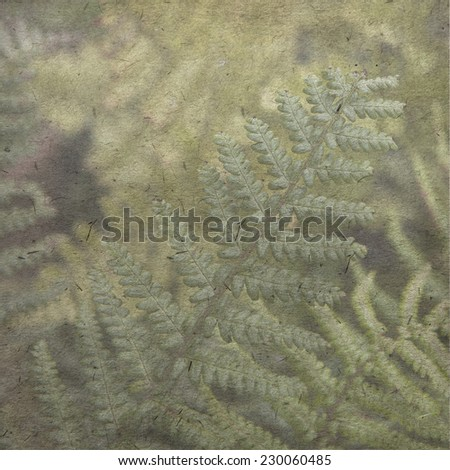 vintage wallpaper background with fern - stock photo