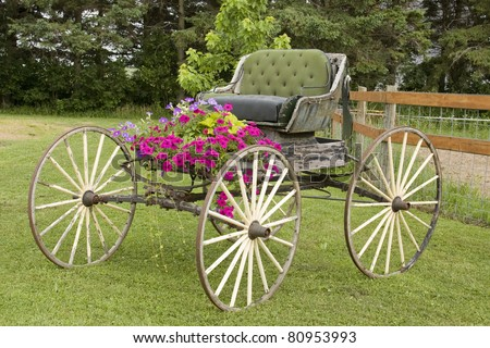 vintage western horse buggy with flowers and trees in the background